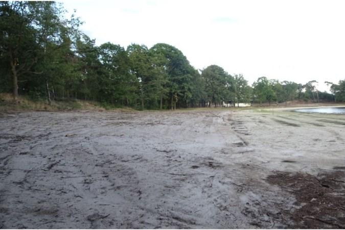 Zonder vergunning bomen gekapt op vakantiepark Heelderpeel