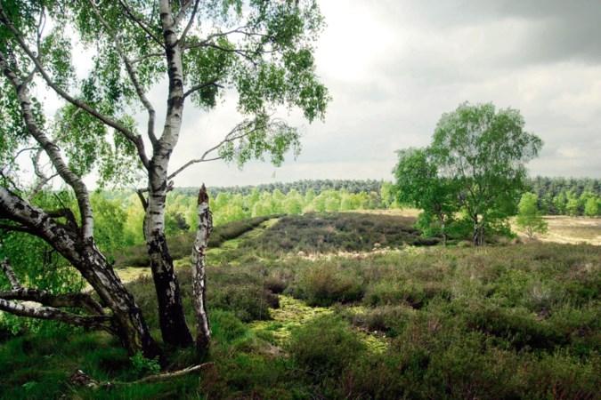 Scoutingterreinen Maasduinen gesloten wegens ontbreken van stromend water