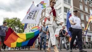 Lint van regenboogvlaggen door Roermond