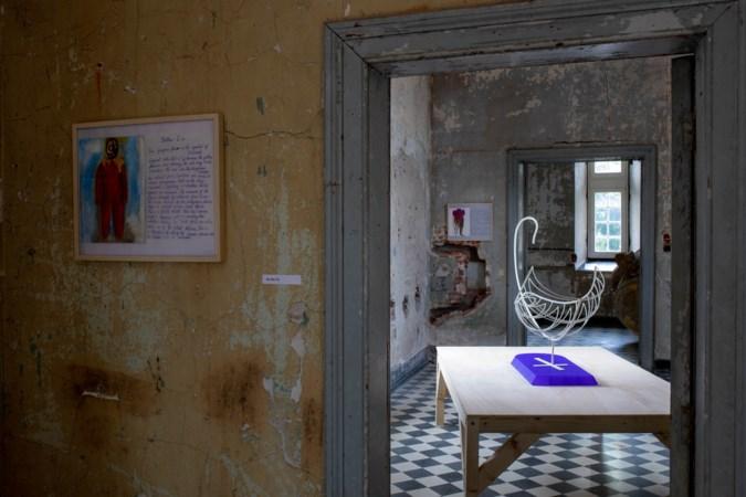Kasteel vol kunst prikkelt nieuwsgierigheid, van gemummificeerde kippen tot anti-Poetin borduurwerkjes