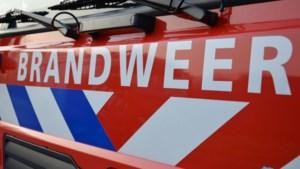 Brandweer rukt uit voor bosbrand bij Schinveld