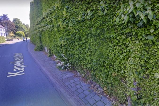 Plan voor zonneweide op voormalig zinkwitterrein in Eijsden ligt ter inzage