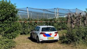 Dode gevonden bij fruitboomgaard in Oirlo