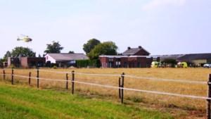Gewonden bij confrontatie met stier in weiland