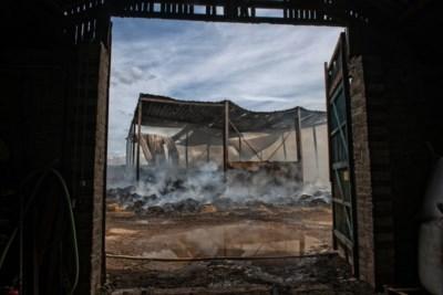 Collega-boeren, ook uit Limburg, schieten landbouwer in Wehr te hulp na verwoestende strobrand