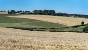 Inwoners van gehucht Schey bij Noorbeek zien liever loodsen dan nieuwe camping: 'Verknal dit prachtige gebied niet'