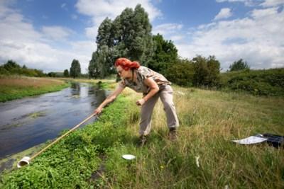 Waterspeurtochten voor gezinnen als alternatief voor de afgelaste lesprogramma's langs de Geleenbeek