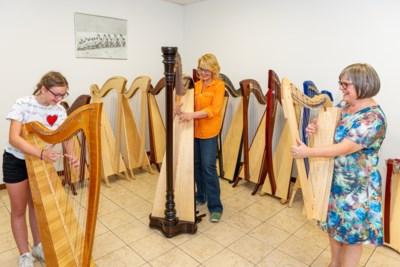 Corona bezorgt Nieuwstadtse harpiste leerlingen in Zwitserland en Amerika