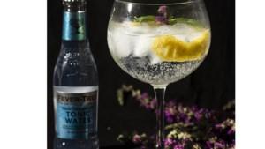 Vier Limburgse kenners verklappen het geheim achter hun favoriete gin-tonic