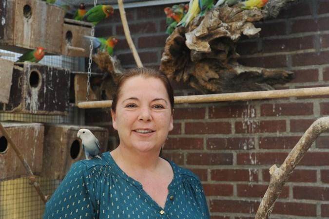 Venlose biedt warm nest voor dakloze parkiet en kanariepiet