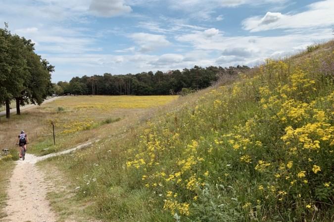Uitfietsen: bos- en grindpaden, veldwegen en veel plezier tijdens 'rondje van de zaak' in Schinveld