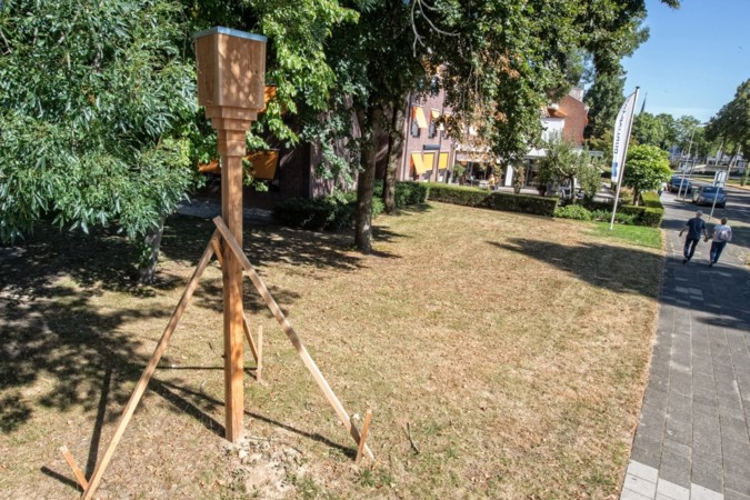 Houten 'flitspalen' voor vleermuizen rond Sittards zorgcentrum doen menig automobilist afremmen