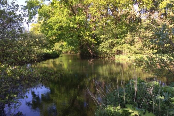 Klimaatproject bij Stramproy goed voor natuur, waterhuishouding en landbouw