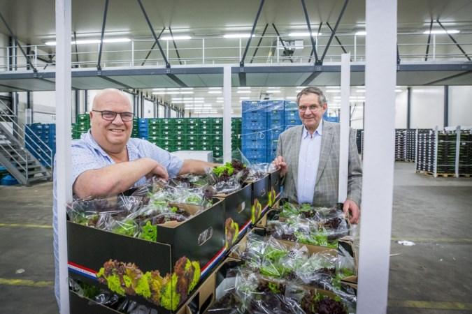 'Tuinbouw Noord-Limburg heeft de boot gemist'