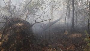 Brandweer is bosvuur bij Venray meester, nablussen nog tot zondag
