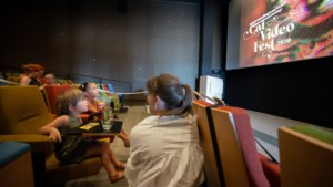 Catvideofest in Sittard: samen kattenfilmpjes kijken is toch leuker dan in je eentje