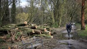 Werk aan beek Stadspark Sittard start in najaar