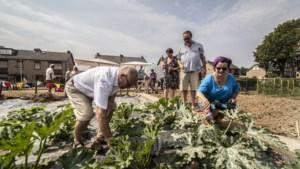 De Keteltuin moet het 'buurtgevoel' in Meerssen-West versterken