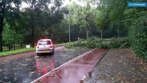 Tropische storm: wateroverlast en omgevallen bomen in Zuid-Limburg