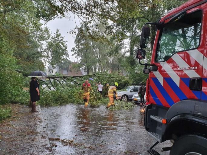 Video: Tropische storm zorgt voor wateroverlast en omgevallen bomen in Zuid-Limburg
