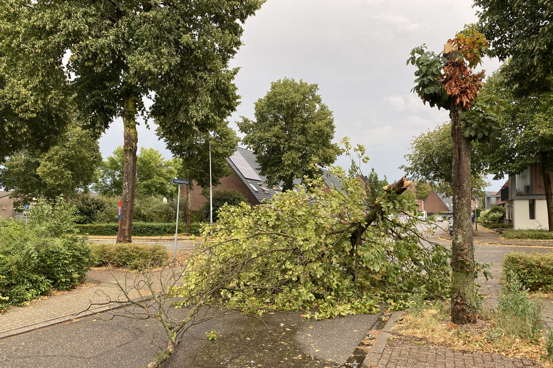Opnieuw felle buien boven Limburg, meerdere meldingen van schade
