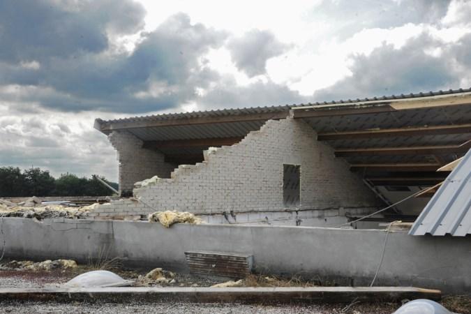 Zomerstorm raasde kort maar krachtig over Noord-Limburg: daken vernield en straten ondergelopen