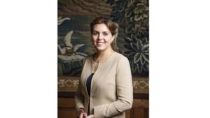 Vouchers voor Zuid-Limburgse ondernemers voor adviestrajecten