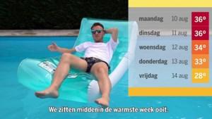 In 90 seconden: hoe Limburg meer en meer opwarmt en het aantal hittegolven spectaculair toeneemt