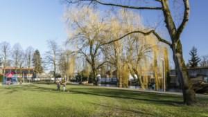 Pleidooi voor historisch verantwoorde inrichting Stadspark Weert
