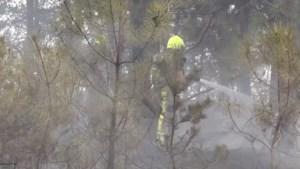 Brand Brunssummerheide geblust: tien voetbalvelden aan natuur verwoest
