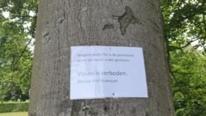 Vissterfte door zuurstofgebrek; visvijver in Brunssums Vijverpark gesloten