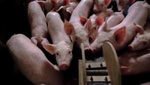 LLTB noemt plan Milieudefensie voor hervorming landbouw verspilling van kennis