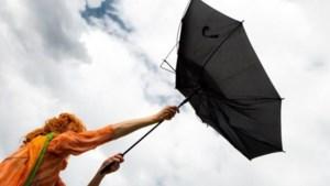 Code geel voor Limburg: zware windstoten verwacht