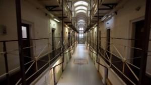 Belgische kunstenaar slaat gevangene dood: 'Hij moet kortsluiting hebben gehad'
