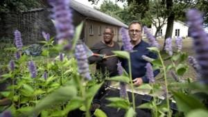 Bezinning en een tuinderij met eigen groenten zijn sleutelwoorden in plan voor De Eikenhof in Mingersborg