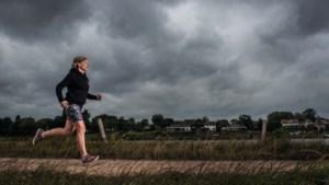Deze Limburgers liepen de New York City Marathon: 'In de bus werd de Venloop geboren'