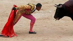Jonge stierenvechter sneuvelt in Franse arena