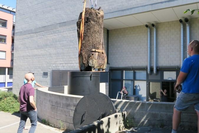 Eeuwenoude waterput uit Weert krijgt langdurig bad in Heerlen