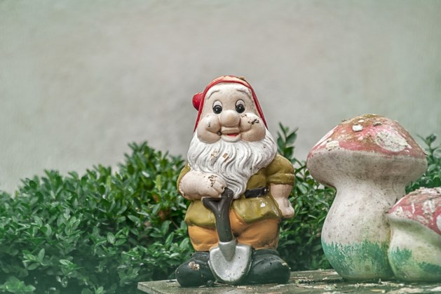 Jinne prul (82): Jadetswerg