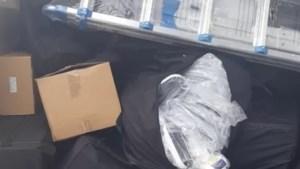 Bijna complete hennepkwekerij in vrachtwagen op A73 aangetroffen, man opgepakt