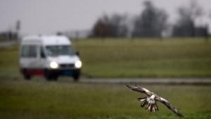 Ouderenpartij wil Broekhem-Noord en Hekerbeek opnemen in route van buurtbus
