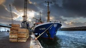 Visserij krijgt het steeds zwaarder: 16 miljoen kilo minder vis uit de zee gehaald
