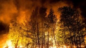 Geen oorzaak gevonden voor grote brand Deurnsche Peel