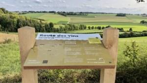Nieuwe wijnroutes voor wijnregio Zuid-Limburg in Eijsden-Margraten en Voerendaal