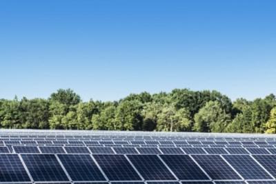 Leudal wijst drie projecten voor zonneparken aan in Neer