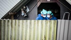 Coronavirus vastgesteld bij nertsenhouderij in Meijel
