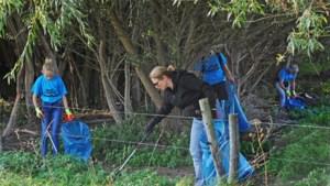 Vrijwilliger Maas Cleanup na steek hoornaar naar spoedhulp: 'Zonder mijn allergie-pen was hij dood geweest'