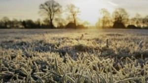 Dinsdag was het nog 35 graden, vannacht vroor het -1,3 graden