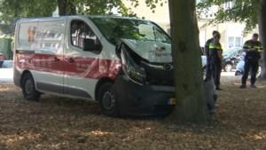 Bestelbus botst tegen boom: bestuurder raakt gewond