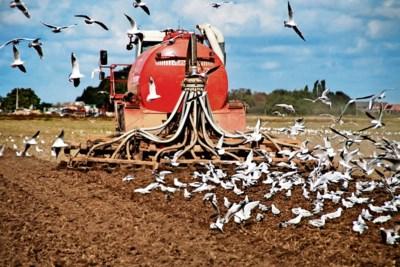 Het vechten om de stikstofrechten van stoppende boeren is begonnen